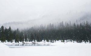 Inverno Estação do Ano Para se Casar